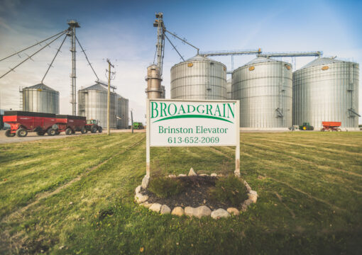 BROADGRAIN COMMODITIES IS PROUD TO BE A GOLD STANDARD WINNER IN 2020